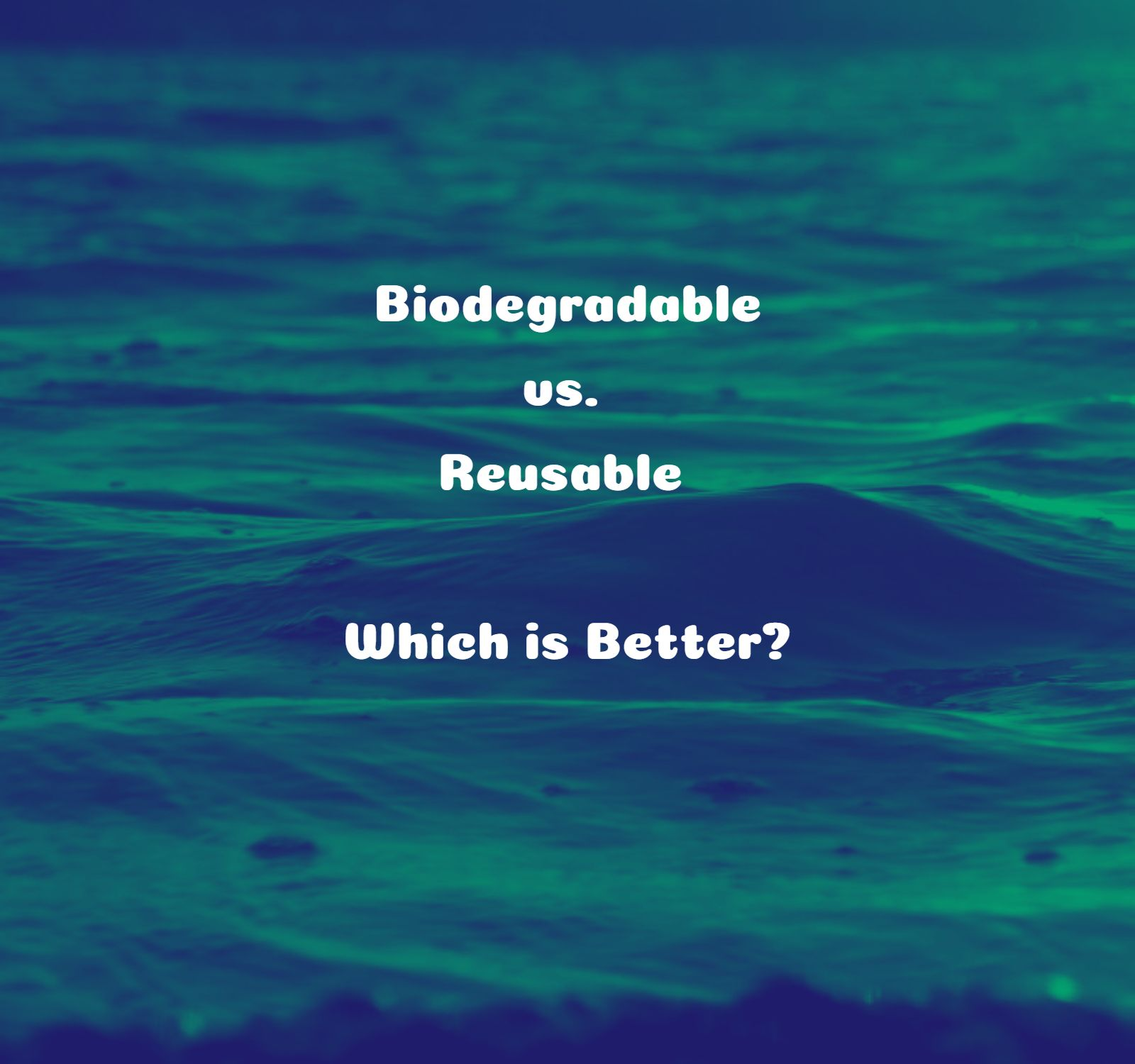 Biodegradable vs. Reusable - Which is Better?
