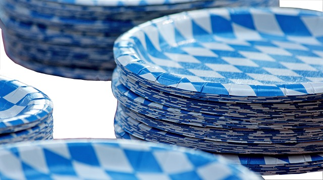 Blue and white patterned paper plates