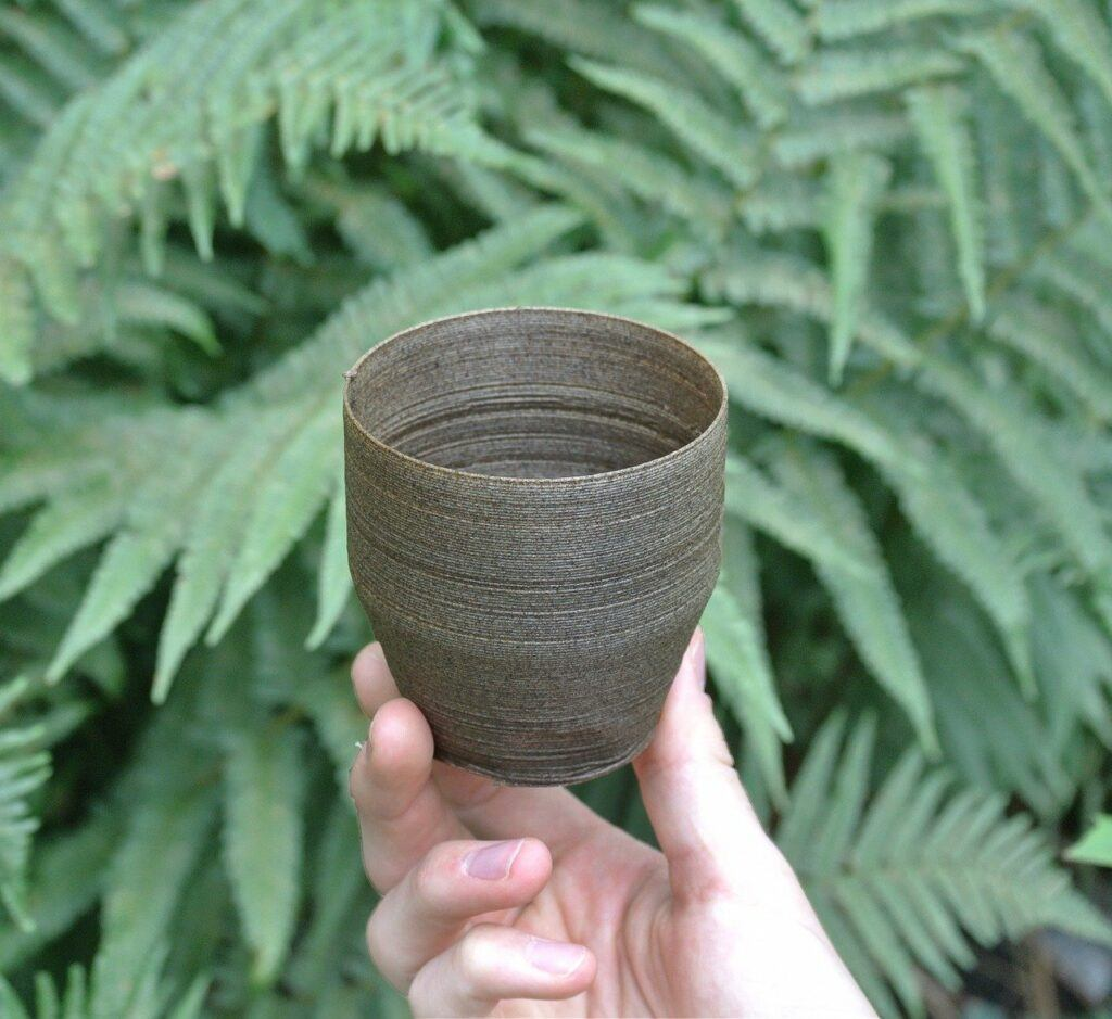 Person Holding an Eco-Friendly Bowl