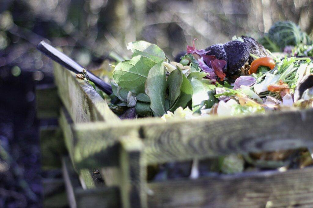 Zoomed-in image of compost bin