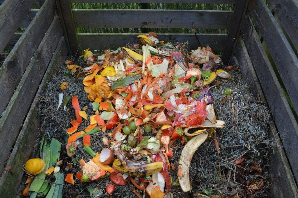 Compost bin filled with fruit.
