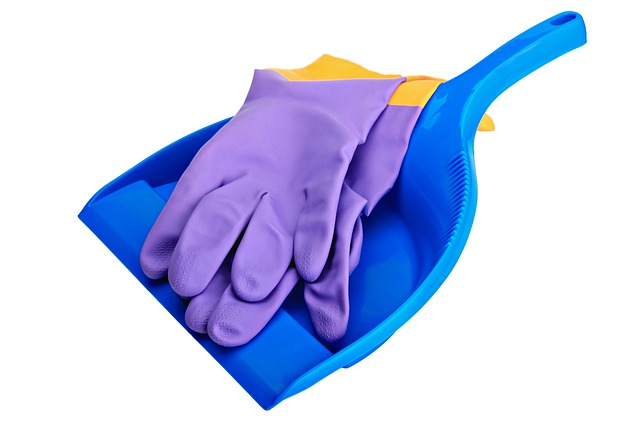 Plastic gloves and plastic dust pan