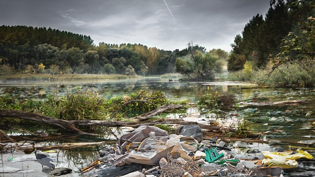 Garbage in river